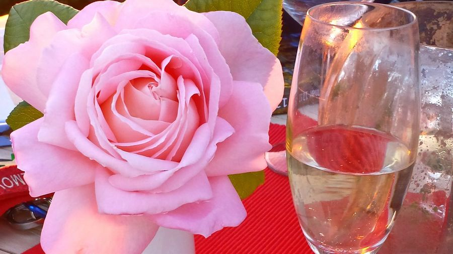 Beautiful Roses  Natural Beauty Enjoying Life Rose With Champaign Glass Romanticism Rose In Evening Light Still Life Stilleben Still Life Photography Roses Pink Rose Roseporn Drinking Champaign Champaign Table Decoration Most Beautiful  rose, Pink Flowers Rosen. this rose has a Beauty Of Extraordinary ! My Best Photo 2015