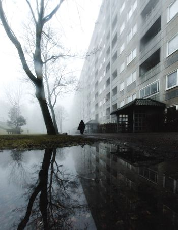 Hammarkullen EyeEm Gallery EyeEm Best Shots Street Mist Foggy Reflection Streetphotography Reflection Building Exterior Architecture Built Structure Tree Outdoors No People City Beauty In Nature Day Water Nature