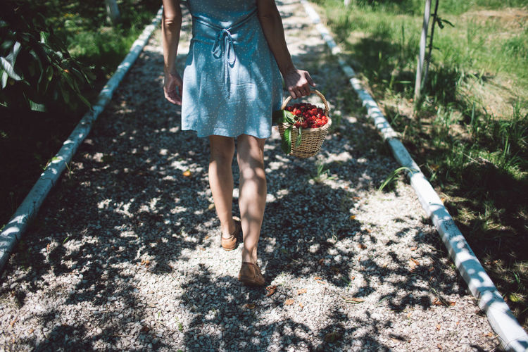 Woman carrying strawberries in basket on footpath