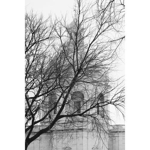 about winter ~ Showcase: February Lisboa Lisbon Winter Portugal Lisbonlovers First Eyeem Photo