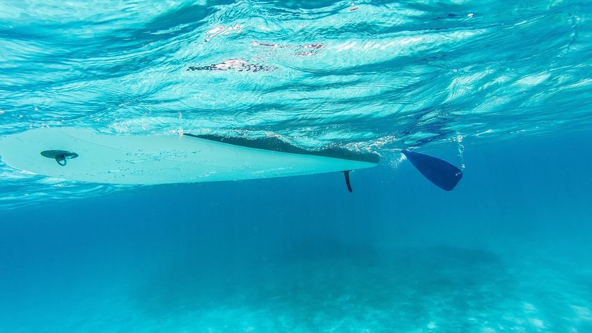 Water Underwater Sea UnderSea Swimming Blue Nature Unrecognizable Person Aquatic Sport Real People Outdoors Lifestyles Adventure Scuba Diving Day Leisure Activity Sport One Person Turquoise Colored Swimming Pool