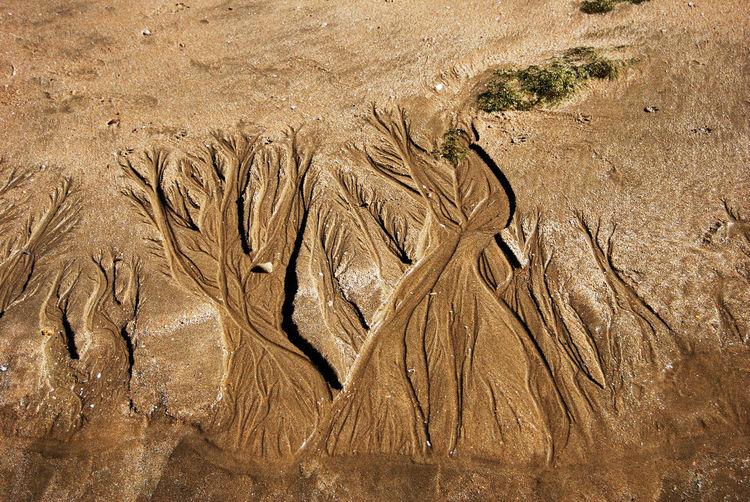 Full frame shot of sand art