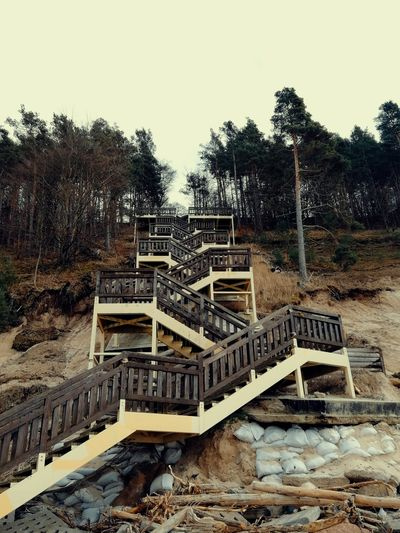 Stairs on the coast Tourist Destination Coastal Feature Baltic Sea Abandoned Weathered Trees Construction Site High Angle View Sky Sandy Zig Zag Up No People Autumn colors Poland Tree Sky Steps And Staircases Steps Stairway Stairs