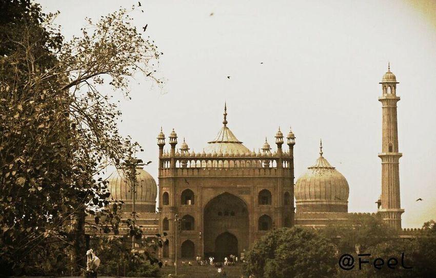 @ Zama masjid FeelPhotography @akhil India Delhi Old Delhi