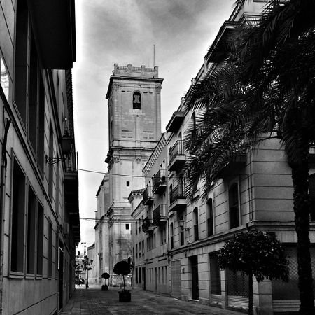 Basilica de Santa María, espectacular iglesia en Elche Enfocae DEALICANTE Blackandwhite