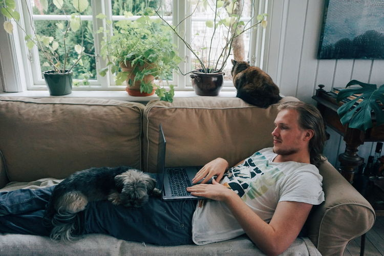 Man Using Laptop With Dog Relaxing On Lap At Home