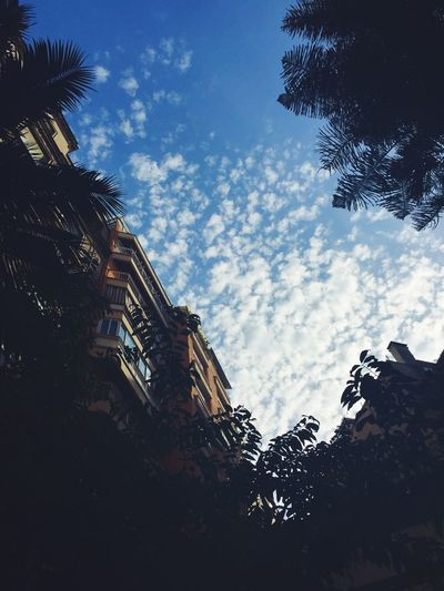 Picture Taking Photos Good Morning Buongiorno Barcelona Be The Store Sky Clouds And Sky
