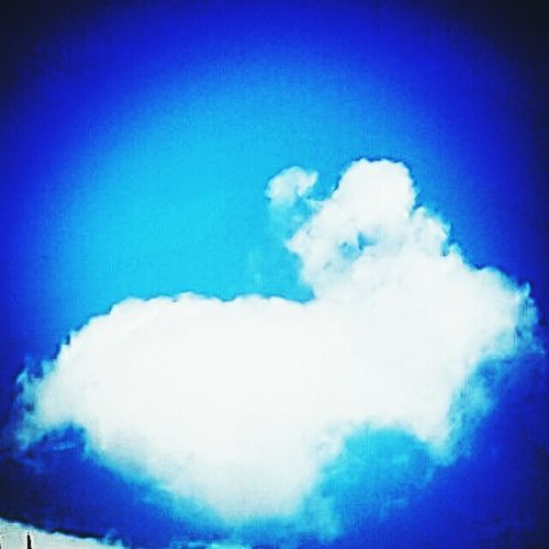 Put your Thinkingcapon and Guess what do you see in this Image Comment Skyporn Blue Rabbit