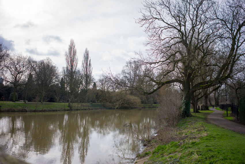 A local park in March 2017, a nice day with Blue sky white clouds, nice reflections in the lake, pathways and wildlife. Blue Sky Countryside Uk Green Grass 🌱 Lake View Nature Outdoors Park Sky Tree Branches Against The Sky Trees White Clouds And Blue Sky Wildlife & Nature