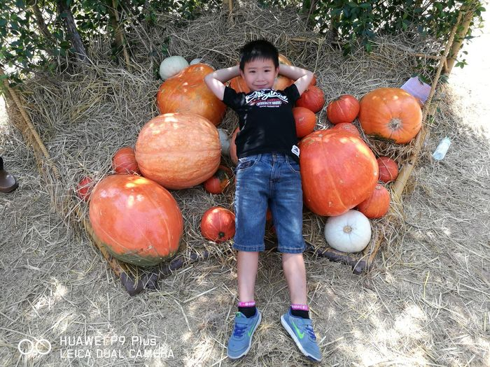 Childhood Boys One Person Day Outdoors Child High Angle View One Boy Only Pumpkin first eyeem photo