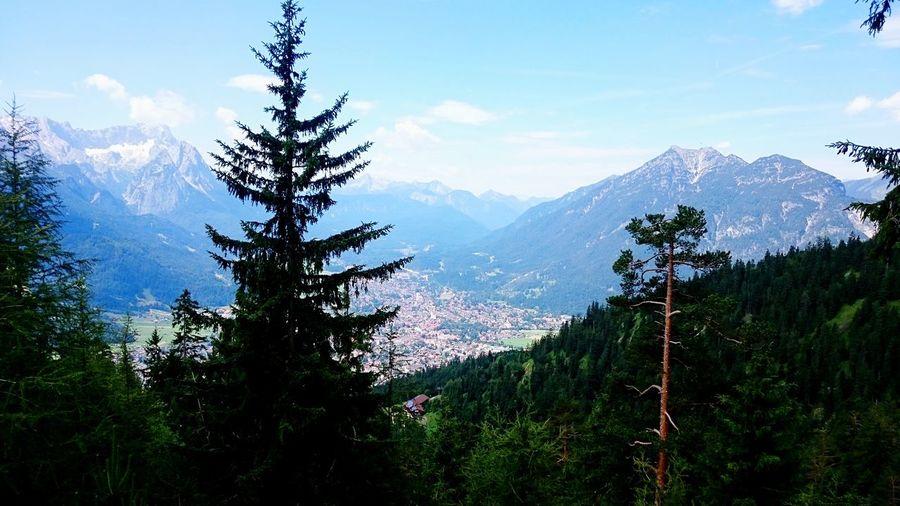View on Garmisch-Partenkirchen Fir Wankbahn Path In Nature View City Plant Tree Sky Mountain Beauty In Nature Cloud - Sky