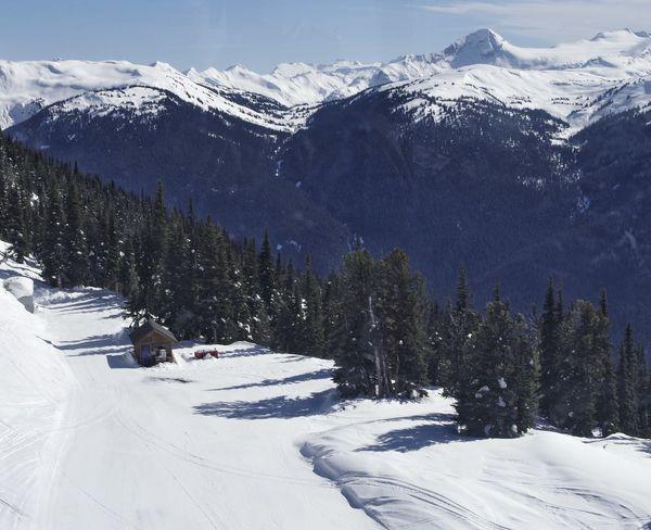Snow Snowcapped Mountain Mountains Forest Trees