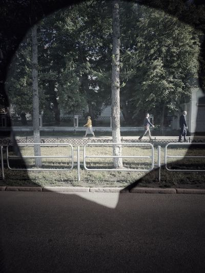 Street Park City People Sunny Day Summer Summertime Walking Outside Russia Streetphotography Road Russian Car View Window Chelyabinsk Crosswalk Street