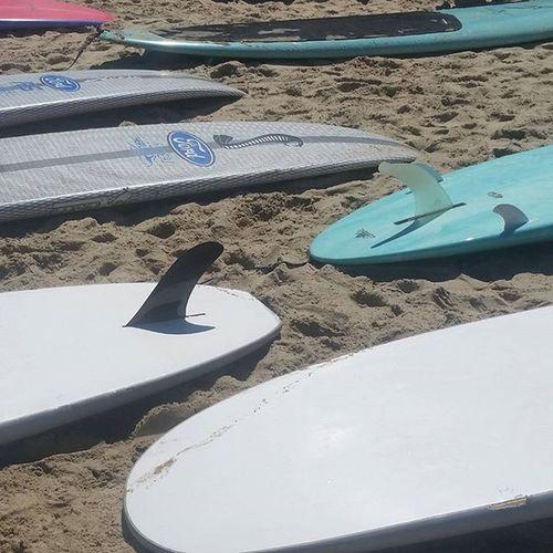 Ridingwaves SurfersHealing