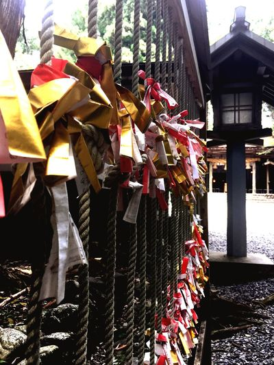 """The """"OMIKUJI"""" is Japanese fortune-telling at shrine.Piking up a OMIKUJI written your future and advice,then tying it to a brunch. Fortune Telling Shrine Omikuji Japan Japanese Culture Hope Future 秋葉神社 お参り おみくじ"""