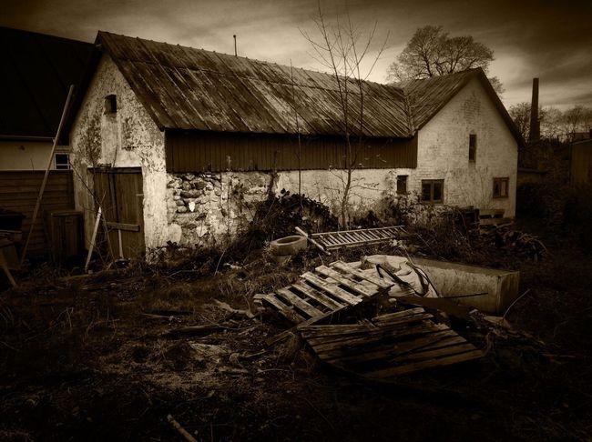 Tadaa Community Danmark Noir App Monochrome