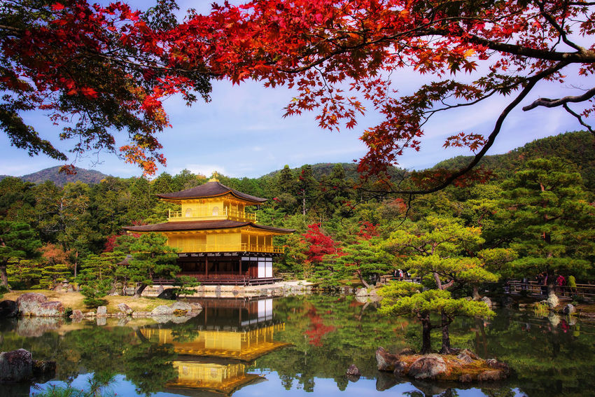Golden pavilion at Kinkaku-ji temple with fall foliage colors, Kyoto, Japan EyeEmNewHere Fashion Kinkakuji Temple Architecture Autumn Beauty In Nature Branch Building Exterior Built Structure Change Day Golden Pavilion  Growth Lake Leaf Nature No People Outdoors Reflection Scenics Sky Tranquility Tree Water Waterfront