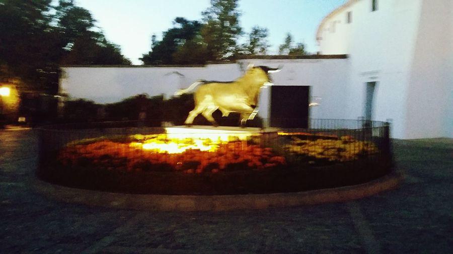 The bull sculture. Illuminated No People Architecture Night