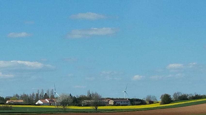 Wind Turbine A Travers La Vitre Sur La Route On The Road Printemps Naturephotography Field Of Rapeseed Sur La Route Nantes à Pontivy Nature Champ De Colza Flowers éoliennes