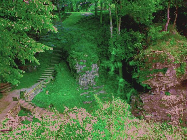 From a business trip I took to southern Illinois. Outdoor Photography Nature Southern Illinois  Illinois Photo Editing Park Paths Trees Green Rocks