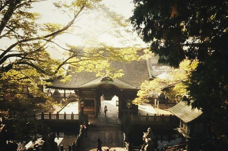 Japan Eyemphotography Travel Photography Beautiful Nature Traveling SonyNex3 Mirrorless