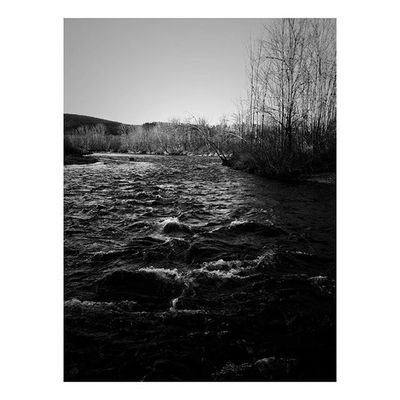 Rapids🌊 . . . . . Nature Landscape Bnw_life Bnw Bnw_captures Newengland ClaremontNH River Afternoon Rapids Mobilephotography Mobilephotography_nature Mobilephotographer Naturelovers Blackandwhite Monochrome Riverside Wednesday Dark Film Woods Hiking Adventures Passion Printshop society6 trees country scenery sunrise