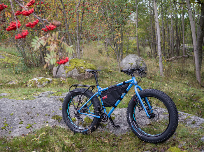 Bicycle in forest