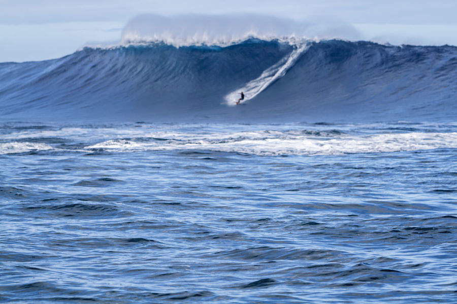 A surfer riding a giant wave in Hawaii BIG Hawaii Surfer Activity Adventure Beauty In Nature Crashing Waves  Day Extreme Sports Front Focus Giant Waves Lifestyles Motion Nature North Shore Ocean Waves Outdoors Scenics Sea Sky Sport Surfing Travel Destinations Water Wave