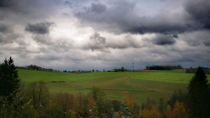 Tree Rural Scene Agriculture Cereal Plant Field Crop  Farm Sky Landscape Cloud - Sky Agricultural Field Cultivated Land Dramatic Sky Atmospheric Mood