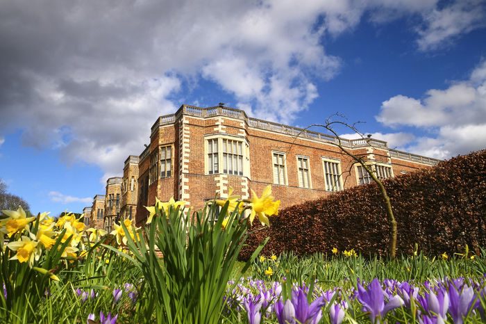 Temple newsam house england uk in the springtime Crocus Flower Leeds Temple Newsam Temple Newsam House Tudor Architecture Building Exterior Cloud - Sky Crocus Daffodil Daffodils Day Flower Flowerbed Growth Heritage Jacobean Nature Sky Uk