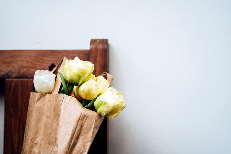 Bouquet of tulips Bouquet Of Tulips Tulip Copy Space Freshness No People Still Life Bag Green Color Organic Paper Paper Bag Springtime Spring Style Wall Wall - Building Feature Flowers Spring Background Simplicity