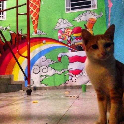 Teman setia Mural Painting Hobby Jakarta