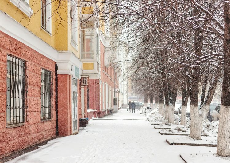 Bare Trees Kemerovo Siberia Russia Street Siberian Life Building Exterior Early Spring Sidewalk Snow Cold Temperature City Architecture