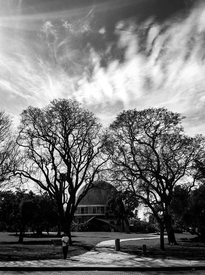 Planetario EyeEm Best Shots EyeEmNewHere Black And White Planetario Sky Cloud - Sky Architecture Tree Built Structure Plant Nature Day Arch Building Exterior Outdoors Travel Destinations Silhouette