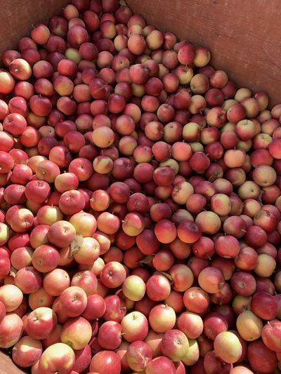 Full frame shot of peaches for sale