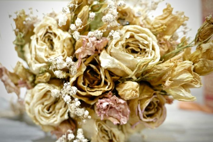 Wedding Flowers Beauty In Nature Bouquet Close-up Day Flower Flower Head Fragility Freshness Indoors  Nature No People Old Rose Old Roses Petal Rose - Flower Wilted Plant