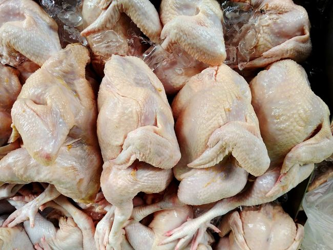 Top view of fresh whole chicken Fresh Chicken Whole Chicken Raw Chicken Hen Broilers Fresh Meat Poultry Frozen Chicken No People Top View