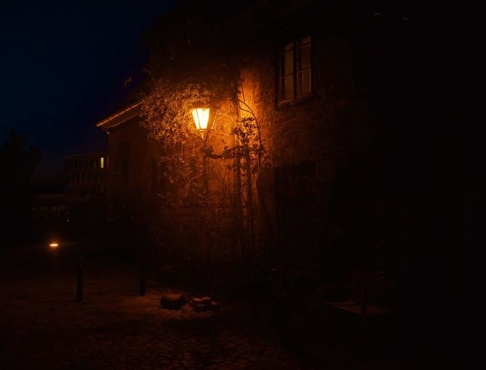 First try of taking pictures at night. Electric Lamp Alley Plant Mystery Tree Outdoors Nature Residential District House Building Spooky Dark City No People Street Light Built Structure Lighting Equipment Street Building Exterior Architecture Illuminated Night Light Glowing Flame Direction