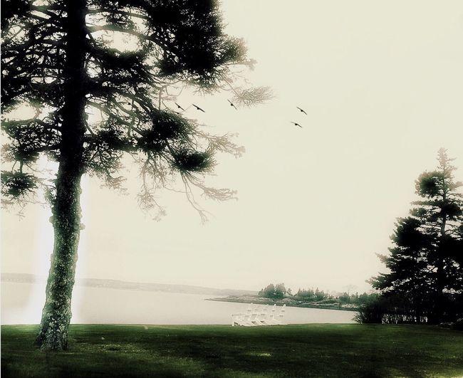 Boothbay Harbor Maine Softtones Enjoying Life Waterfront