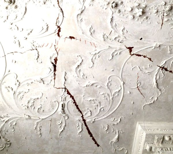 Fancy Ornate Decaying Structure Ceiling Design