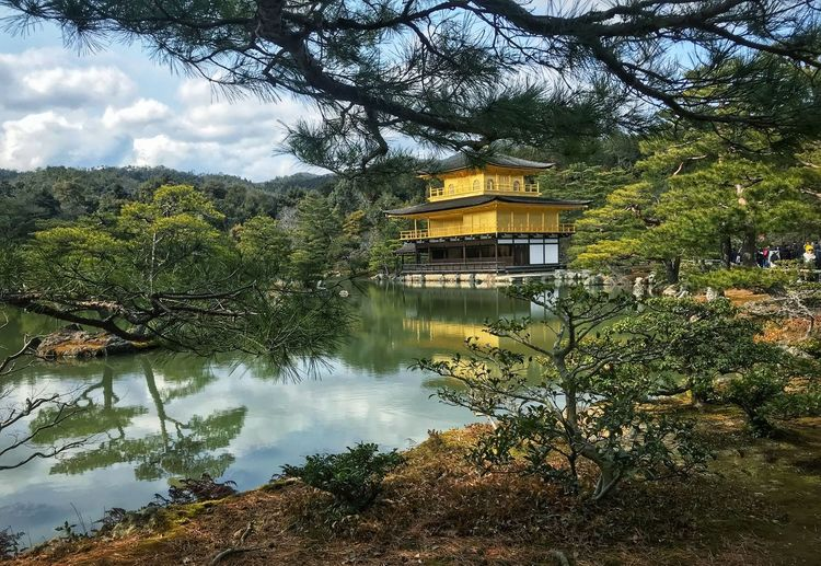 Scenics - Nature Scenery Scenics Photography Travel Japan Temple Golden Tree Plant Water Built Structure Reflection Architecture Nature Lake No People Building Exterior Cloud - Sky Beauty In Nature Day Outdoors