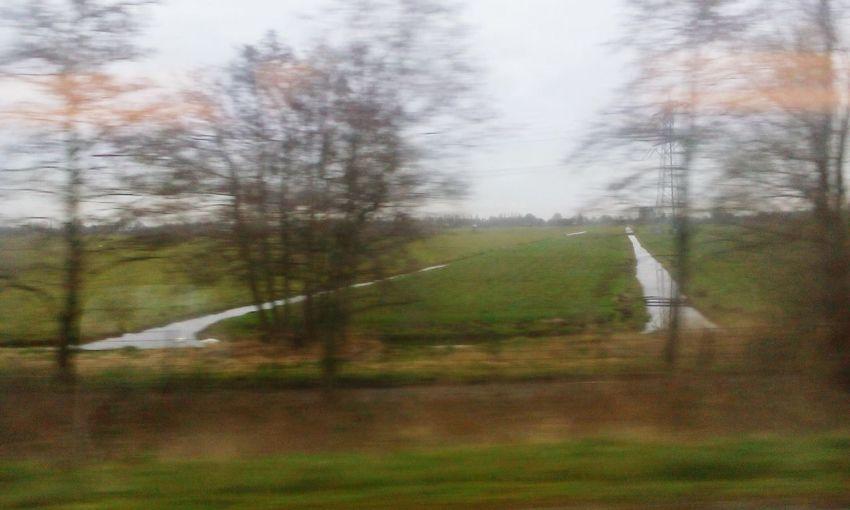 Train: Utrecht