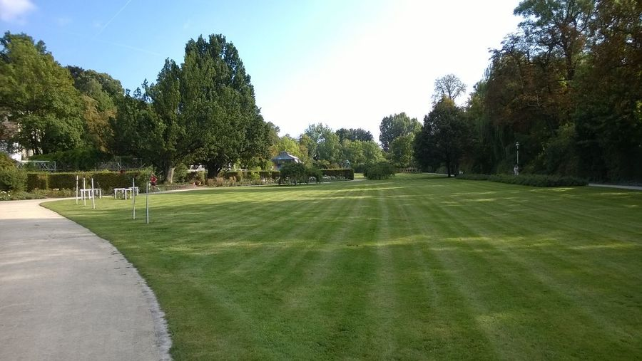 Activity Beauty In Nature Day Environment Golf Golf Course Grass Green - Golf Course Green Color Growth Landscape Leisure Activity Nature Outdoors Park Plant Playing Field Sky Sport Tranquil Scene Tree