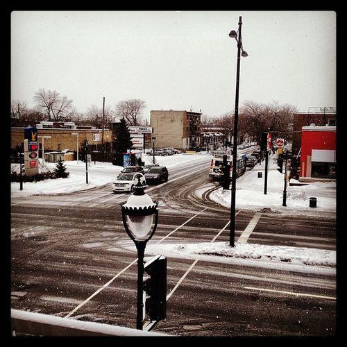 Fau'q j'sorte mais j'pas envie d'êt' dans neige! Tant pis, j'y vâ!