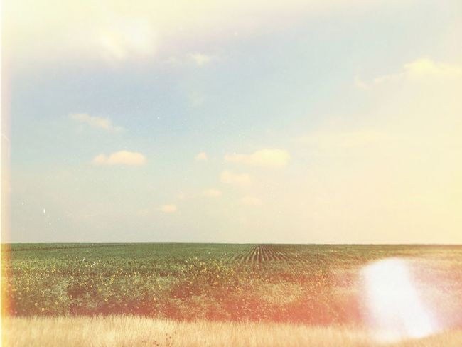 Nature Beauty In Nature Countryside Countryside Landscape Flats Flat Lands Flat Landscape Sun Effect Vintage Vintage Country Sky Scenics Tranquil Scene Tranquility Outdoors Day No People Field Landscape Grass The Great Outdoors - 2017 EyeEm Awards Texas Landscape EyeEm Selects