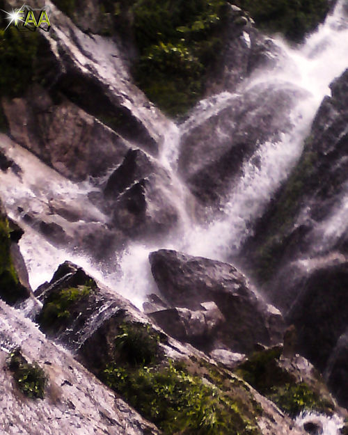 Beauty In Nature Blurred Motion Day Flowing Water Forest Freshness Long Exposure Motion Nature No People Outdoors Power In Nature Purity Rapid Scenics Travel Tree Water Waterfall