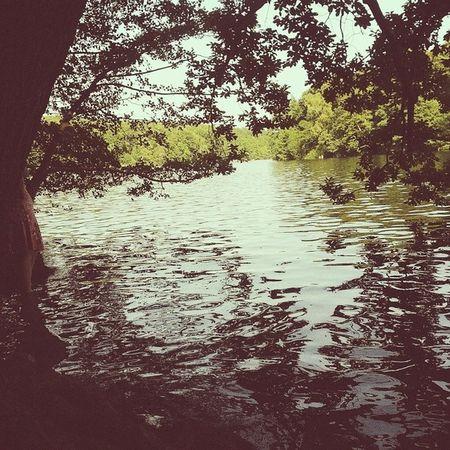Sombra e água fresca. Berlin Lake Summerfeelings Swimming