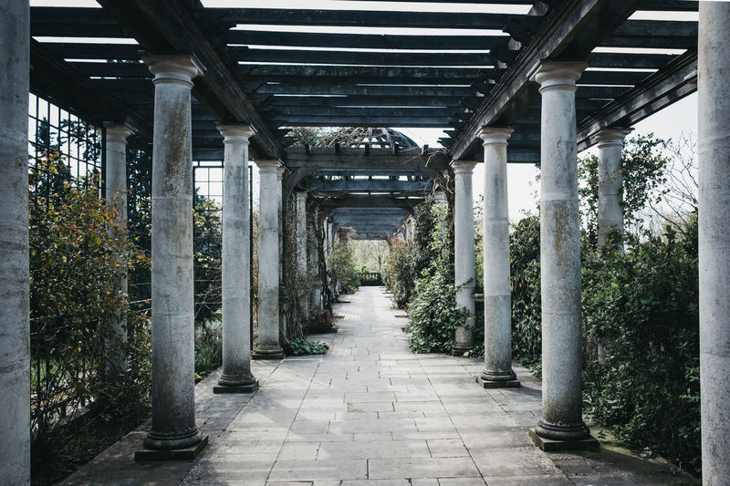 The Hill Garden and Pergola in Golders Green, London, UK. The area was opened to the public in 1963 as the Hill Garden. Golders Green Hampstead Heath Outdoors Day Built Structure London Uk Hill Garden Garden The Hill Garden And Pergola Pergola Public Park United Kingdom Structure Architecture Direction The Way Forward Architectural Column No People Diminishing Perspective In A Row Footpath Connection Empty Concrete Colonnade Long
