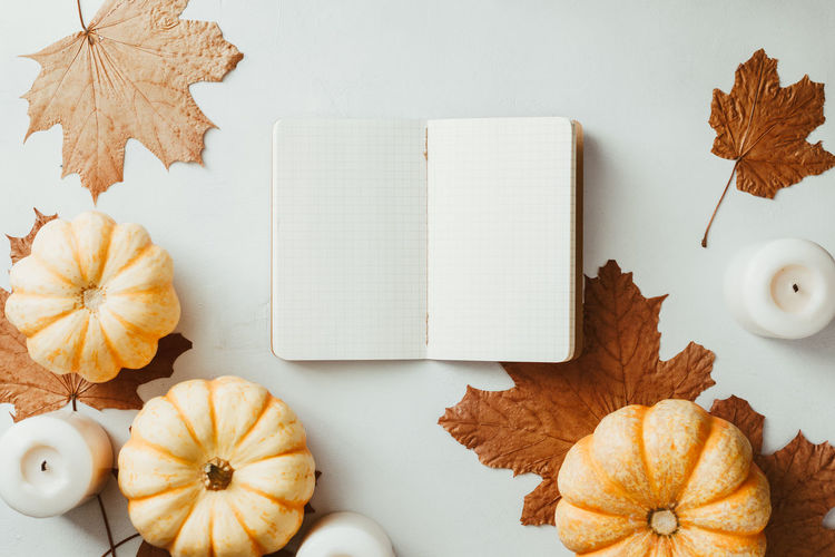 Autumn flat lay with small pumpkins, fall maple leaves and blank paper notebook on a white background. The concept of september and school, mockup Autumn Top View Flat Lay September October November Maple Note Notebook Empty Blank White Above School Pumpkin Candle Concept Cozy Winter Mockup Fall Back Background Education Mock Desk Table Design Pencil Template Colorful Copy Space