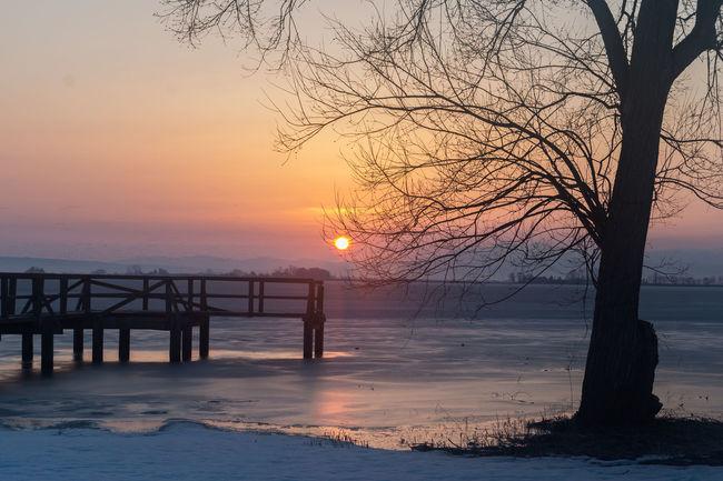 Horizon Over Water Lake Nature Silhouette Sunrise Tranquil Scene Tree Winter